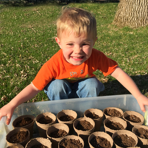 Planting Seeds With Preschoolers