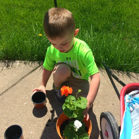 Planting Flowers For Our Garden Theme